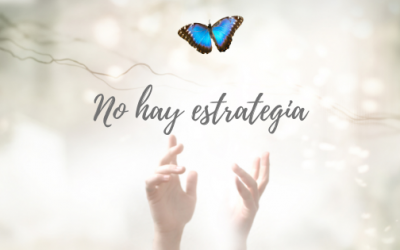 NO HAY ESTRATEGIA